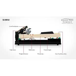 Kawai launch the new Kawai CA58 Digital Piano available at Keysound  the Piano & Keyboard Specialist