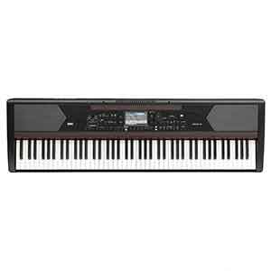 Korg Havian 30 Digital Ensemble Piano Just Announced